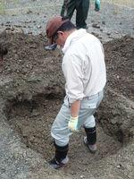 掘り出した土を戻しながら踏み固める