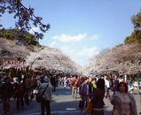 旅行新聞風水コラム第5回~『日本史上最高の風水師・天海僧正』~