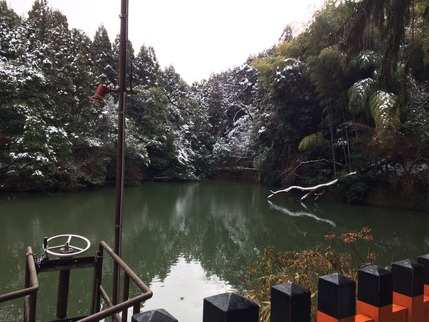 稲荷山登山道途中にある池