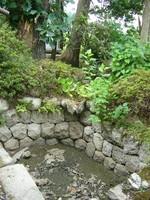 北方位にある池(来水を閉鎖中)