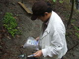 分杭峠にて地磁気を計測しているケロケロウメサン