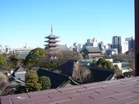 2011.1.30 浅草寺の五重塔