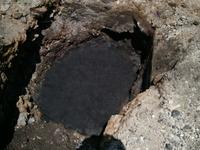 4/25 磁場改善の炭500L埋設完了